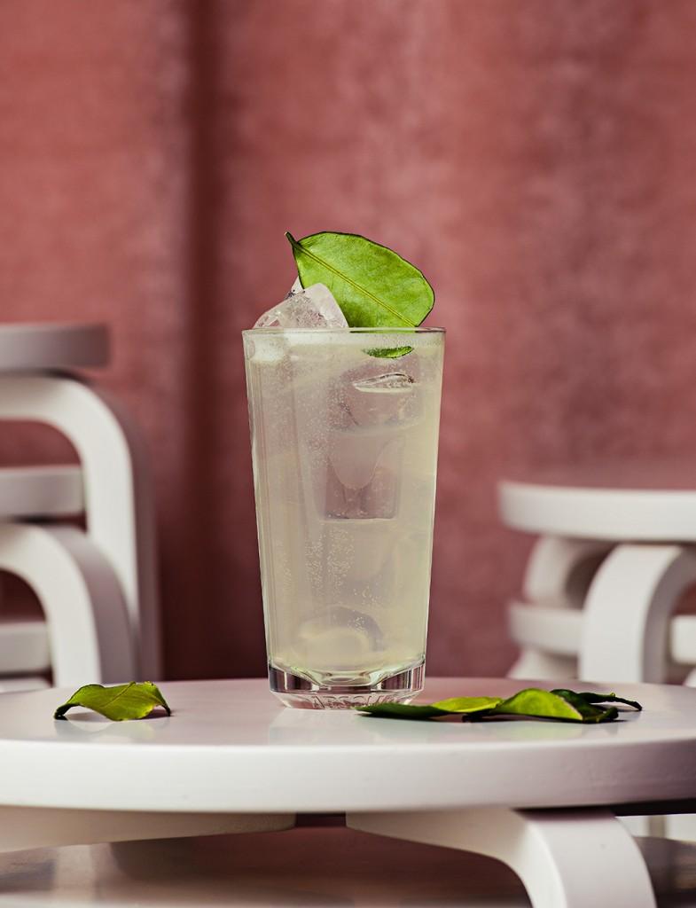 pr_elle_absolut_drink_004